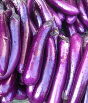 Brinjal - Violets