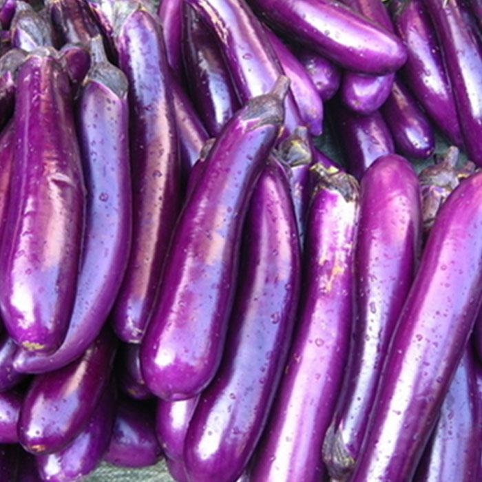 brinjal-violets-long